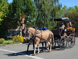 Hells Canyon Mule Days, Enterprise, Oregon