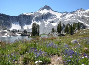 Summer View of Eagle Cap Peak