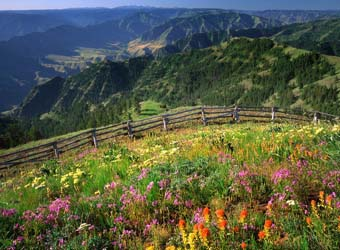 View of Hells Canyon area