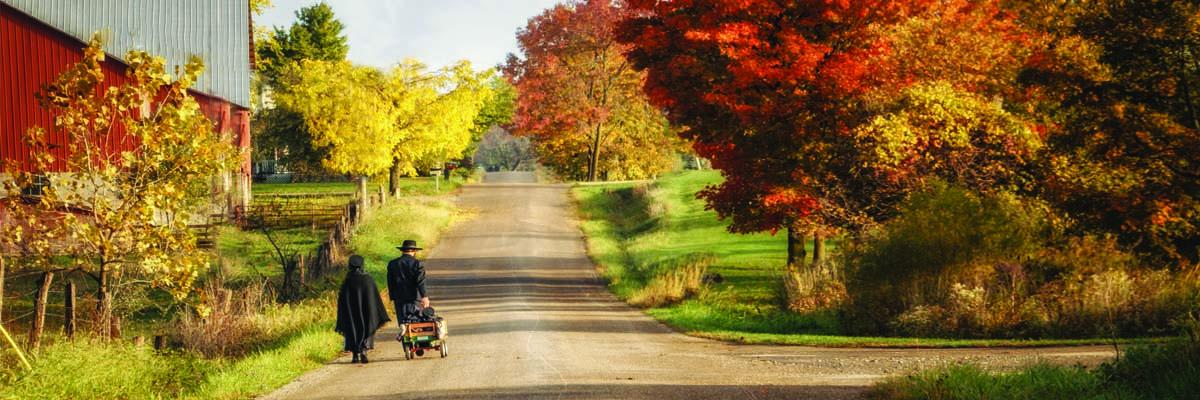 Amish-kids-n-Fall.jpg