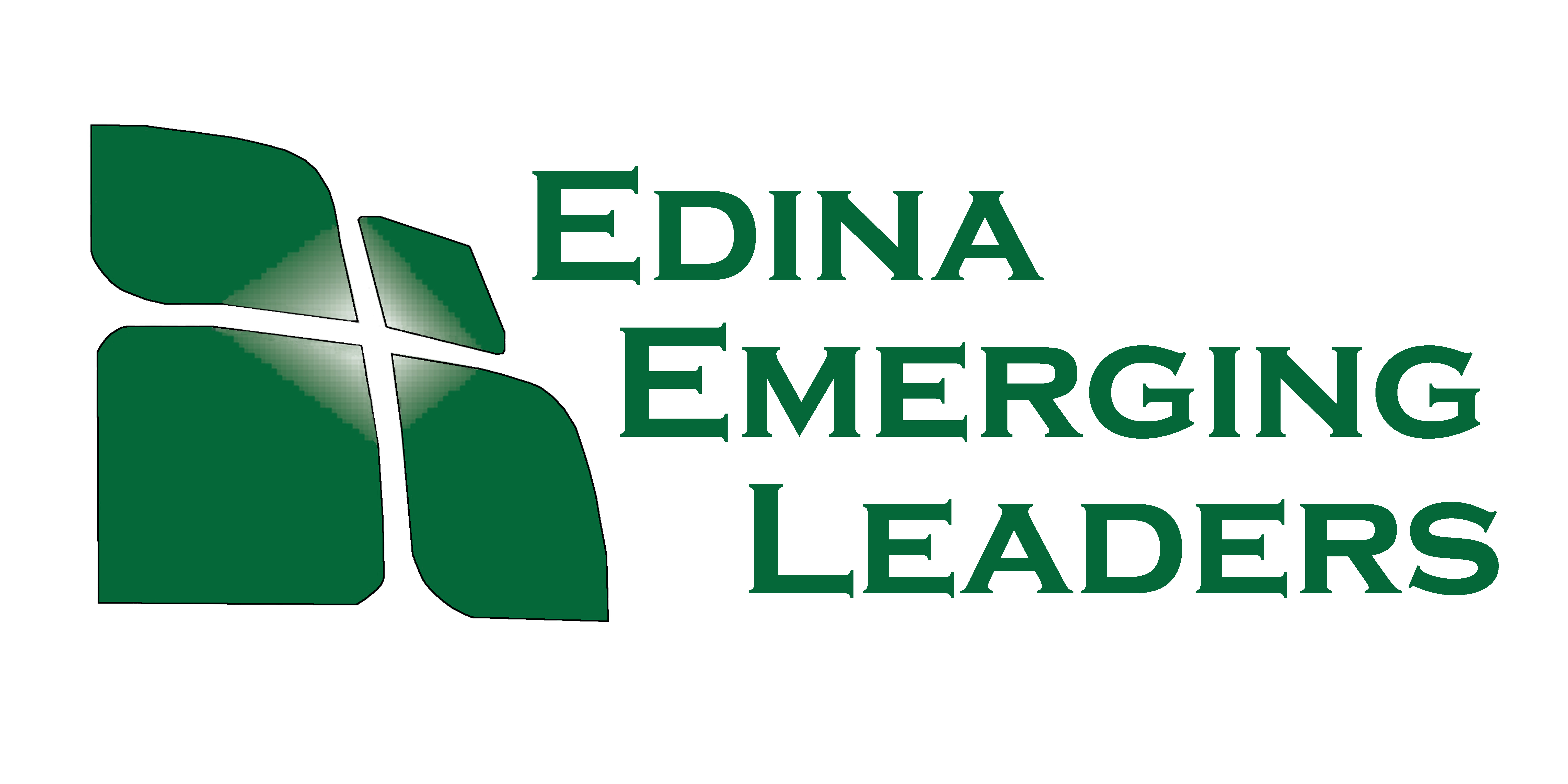 Emerging leaders edina chamber of commerce mn
