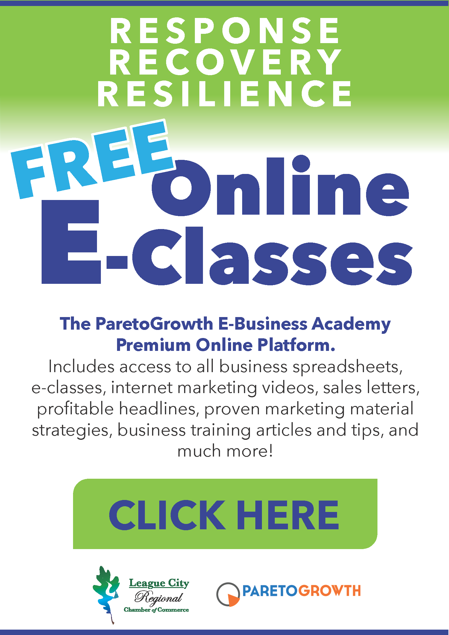 The-ParetoGrowth-E-Business-CLASSES-LINK-ART.png