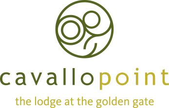CavalloPointLogo.png
