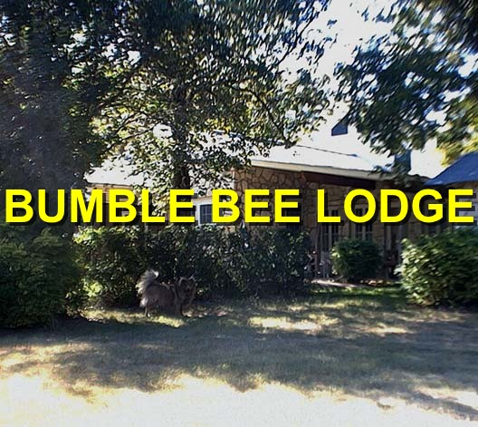 bumble_bee_lodge_logo_new.jpg