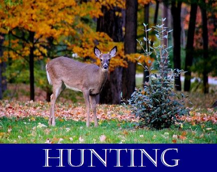 Hunting_Picture.JPG