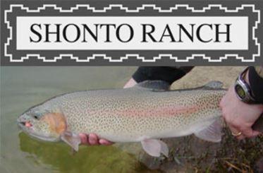 shonto_ranch_logo.JPG