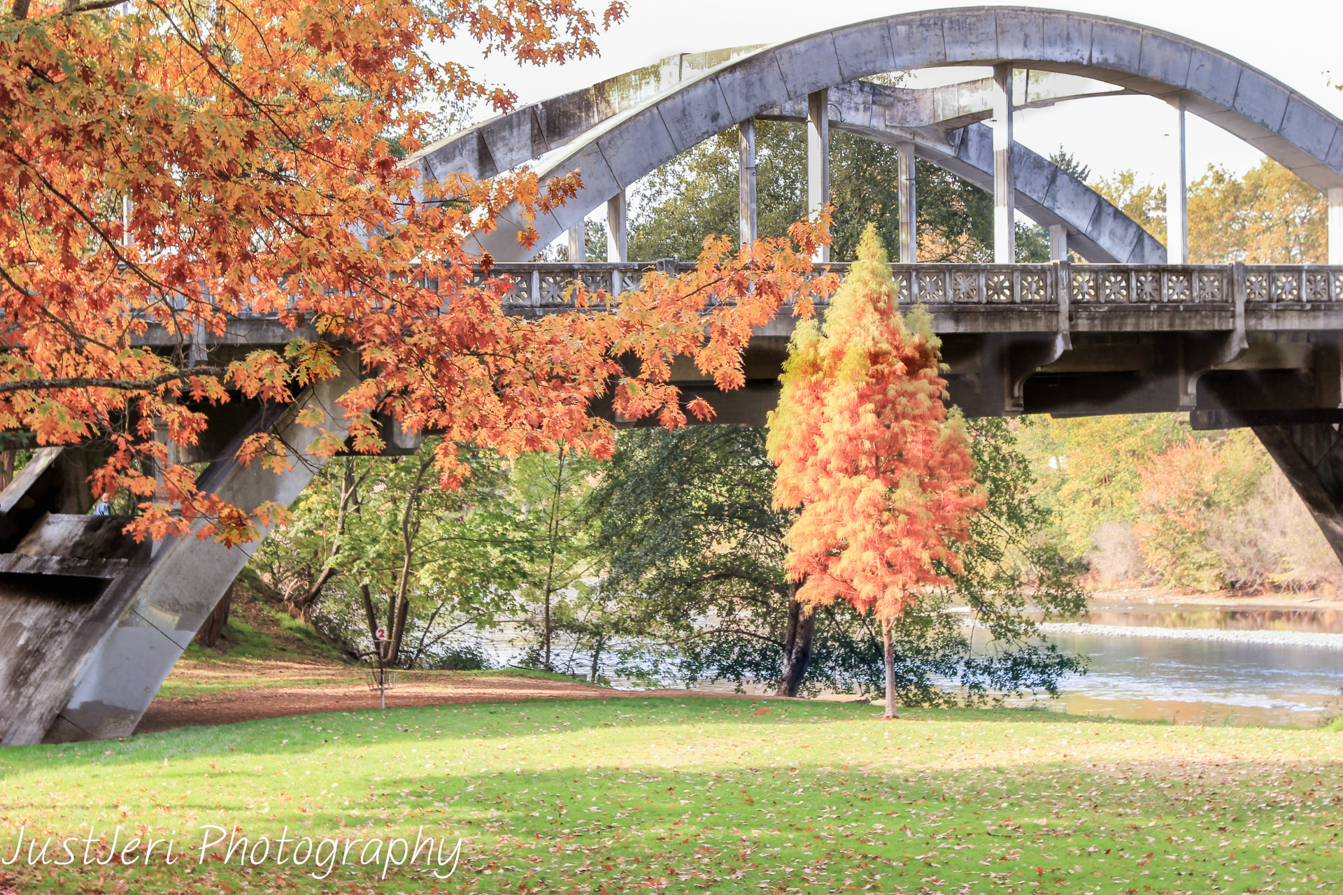 Just_Jeri_Bridge-in-the-fall-w1920.jpg