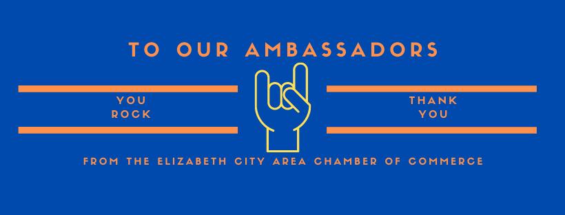Ambassadors-Web-(1).png