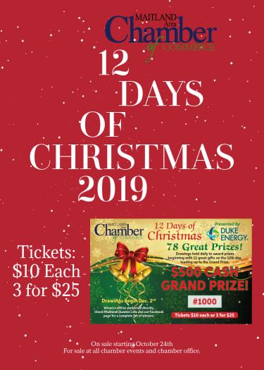 12-Days-of-Christmas-Flyer-w375.jpg