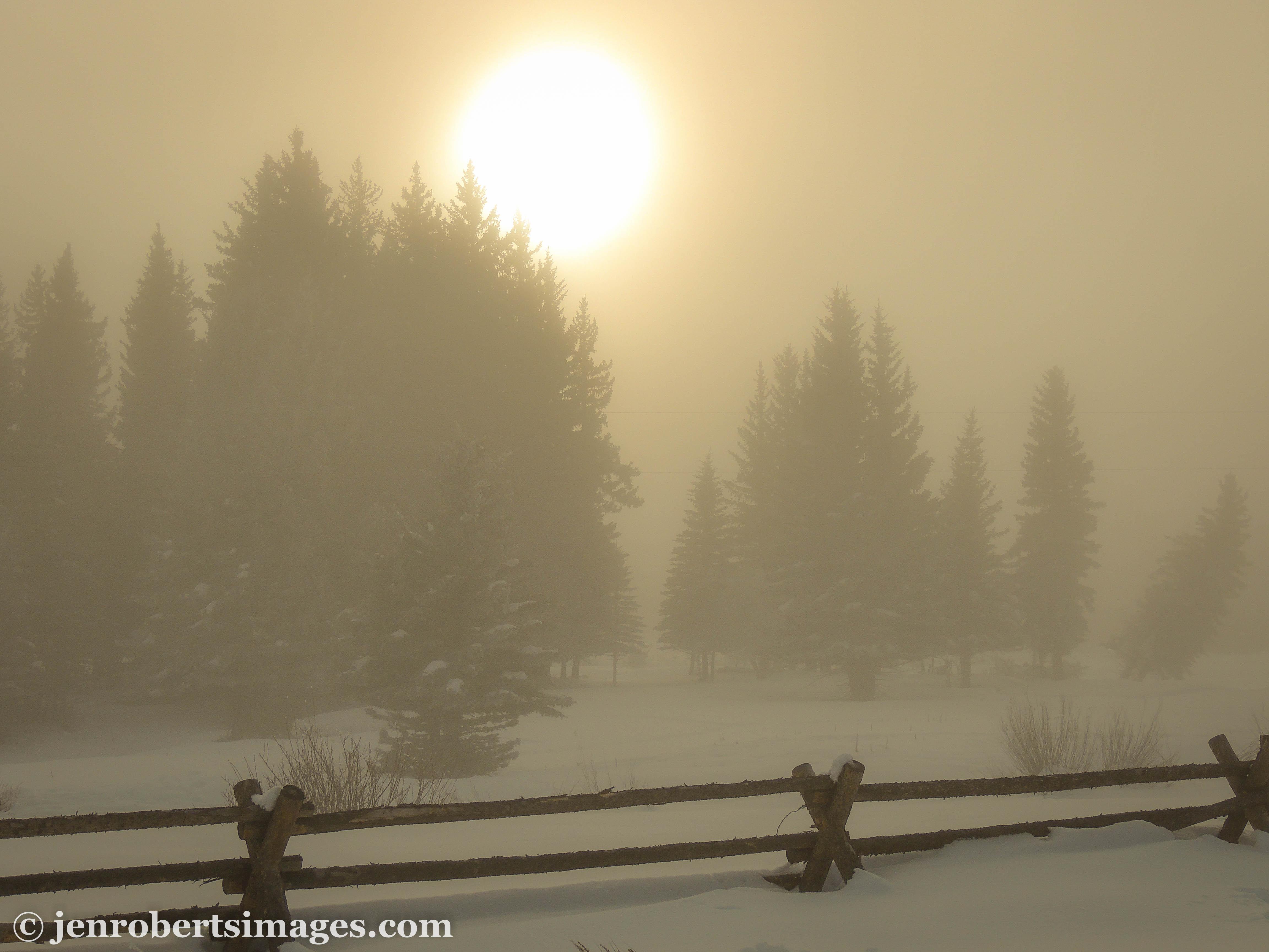 Fog_Bow-2.jpg