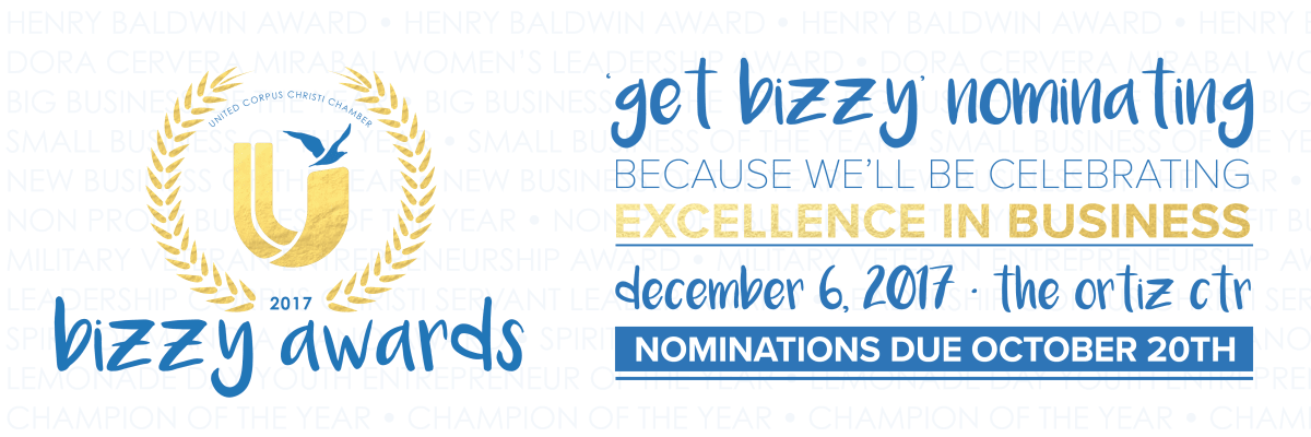 2017-chamber-bizzy-awards-excellence.png