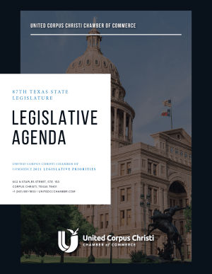 2019-State-LegislativeAgenda-w300.png