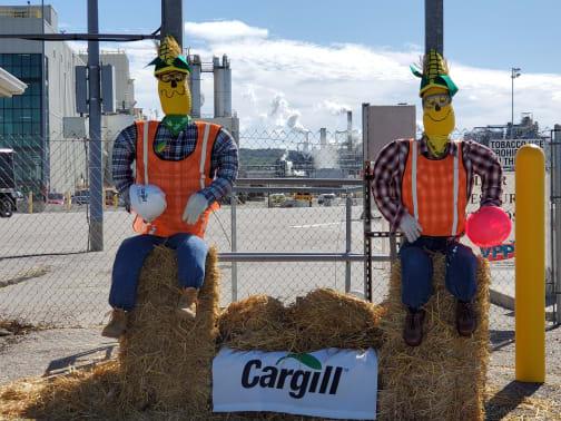 Cargill-w504.jpg