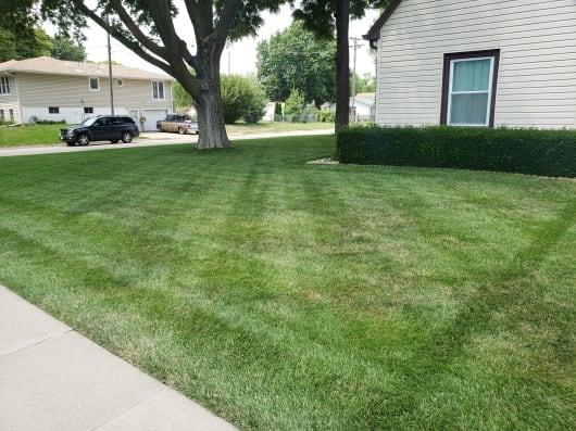 Side-Yard-w530.jpg
