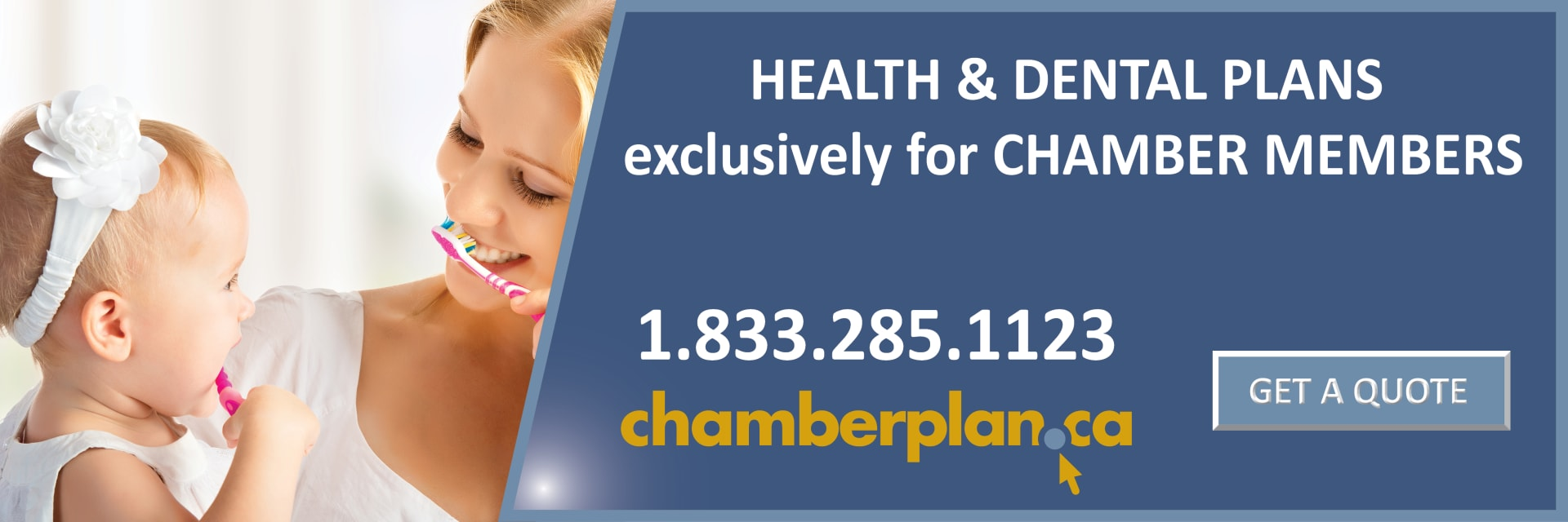 ChamberPlan-Banner-1200px-by-400px-w1920.jpg