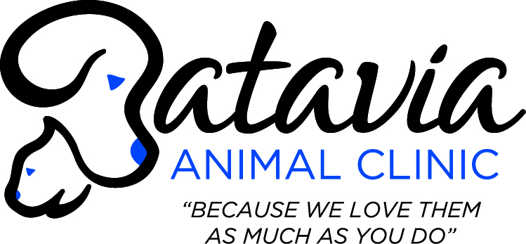 Batavia_Animal_Clinic_NEW_LOGO.jpg