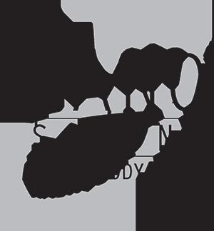 Zano_Salon_and_Day_Spa.png