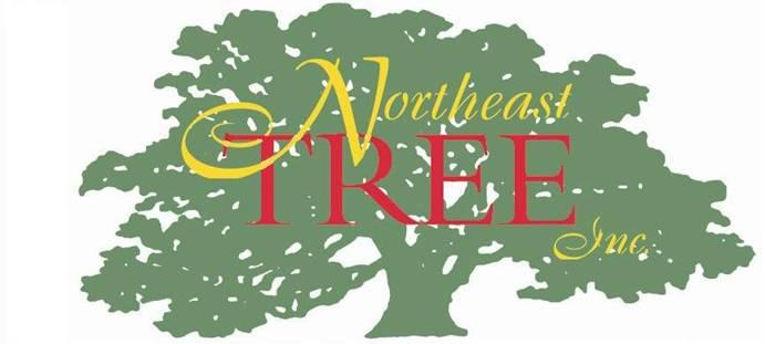 Northeast Tree Inc