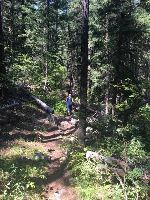 Trinity-Falls-Hike.jpeg