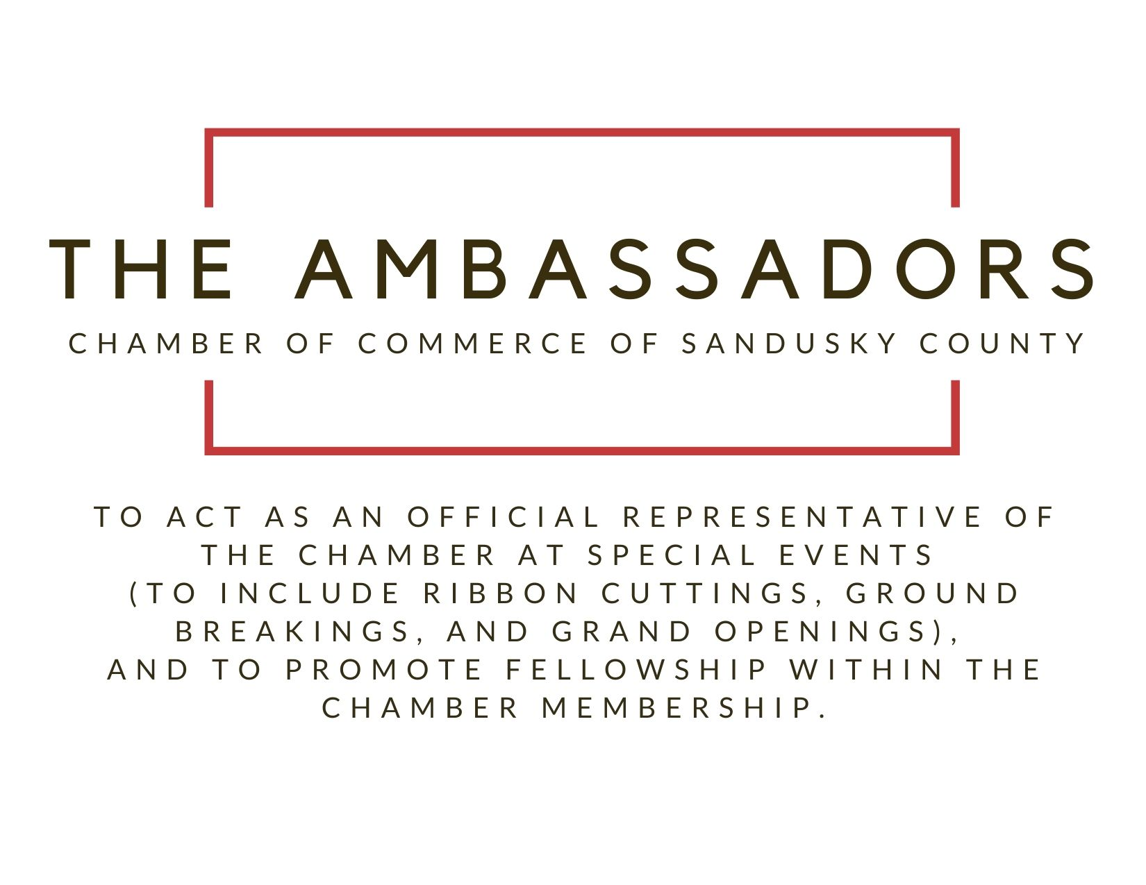 the-Ambassadors.jpg