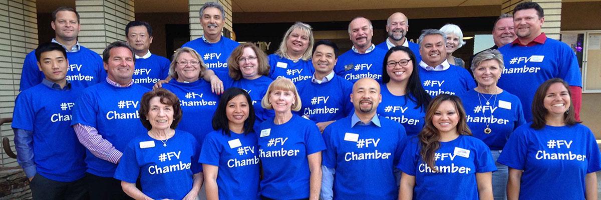 FVChamber2.jpg