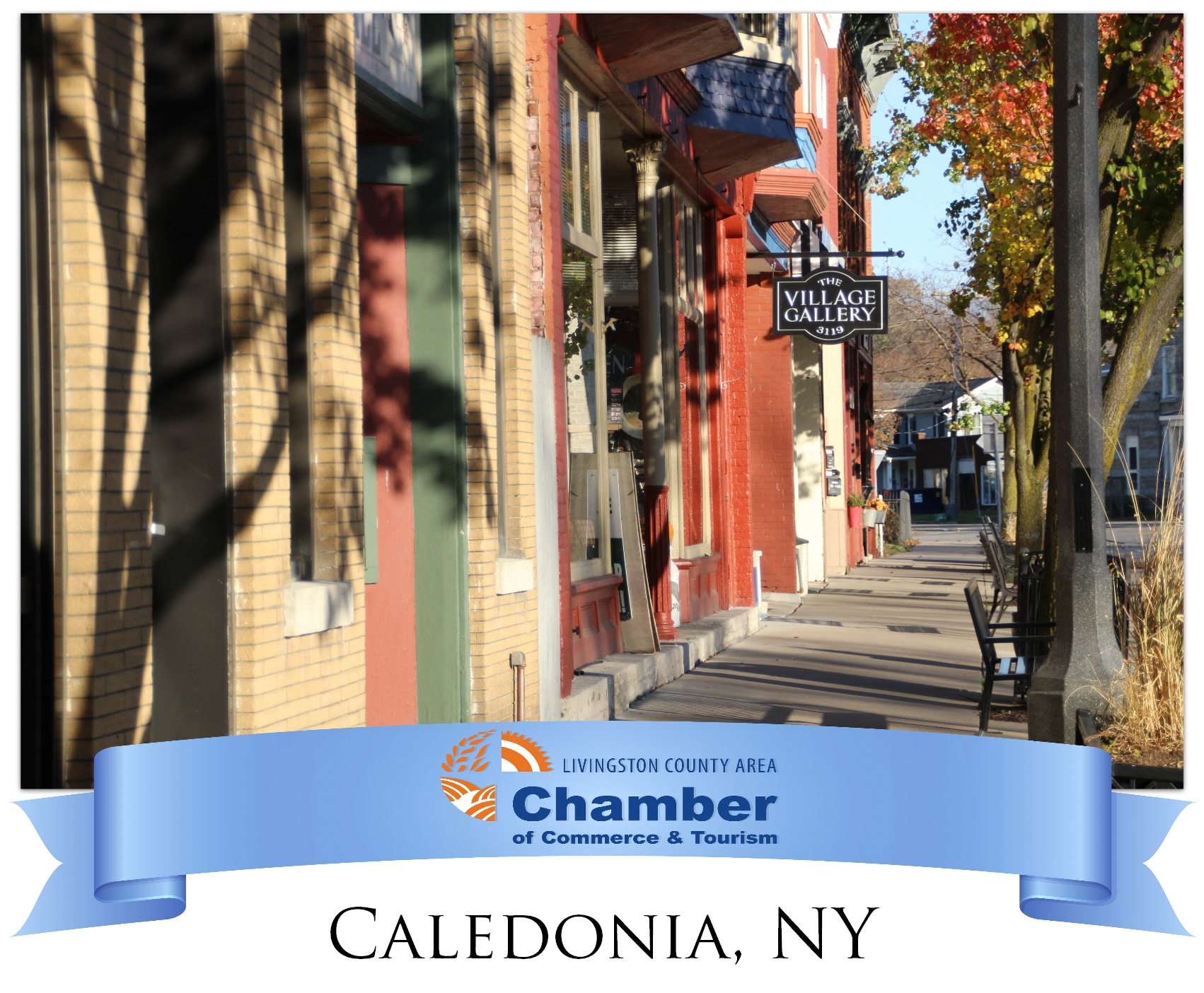 Chamber-Website.-Community-Resource-Graphic---Caledonia.jpg