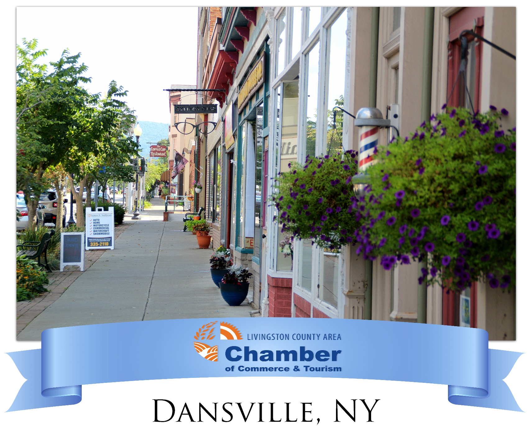 Chamber-Website.-Community-Resource-Graphic---Dansville.jpg