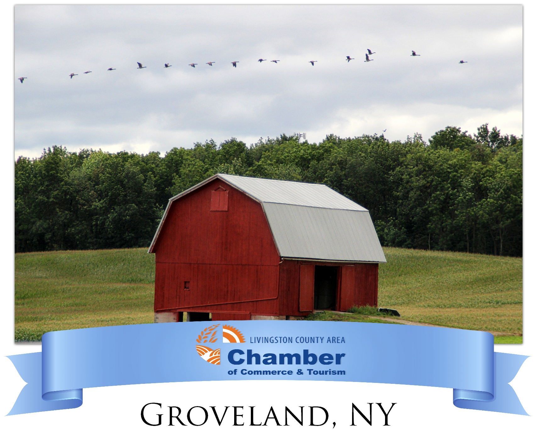 Chamber-Website.-Community-Resource-Graphic---Groveland.jpg