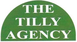 The Paul F Tilly Agency, Lima, NY, Dream Wedding Expo, Livingston County Chamber