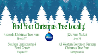 Chamber Member Spotlight, Member Promotion, Marketing Campaign, Christmas Trees, Grzenda, All Western Evergreen, Steuben Landscaping, J & A Farm, Chamber Factor