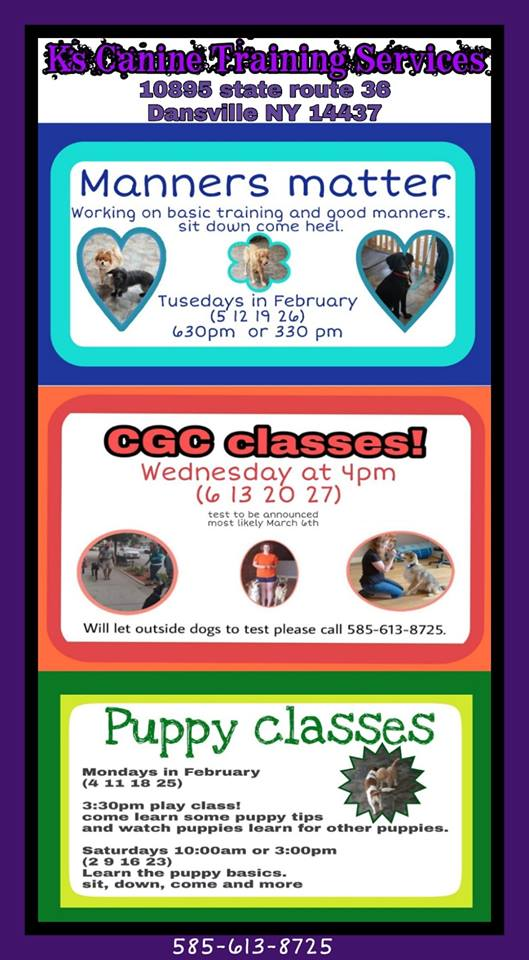 K's Canine Training Services, Dog Puppy Classes, Livingston County Chamber, Shop IN Livingston, Trip Planner