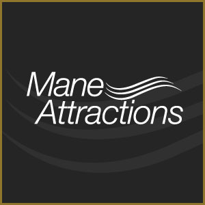 Madison's-Best-Personal-Service-2018-2019-Mane-Attractions-Salon