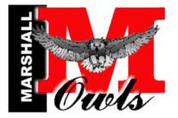 marshall_owls.jpg