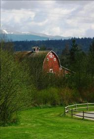 POSTCARD_Tolt_Barn_Spring_WEB.jpg