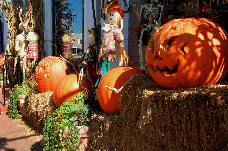 Fall into St. Michaels October 23-24