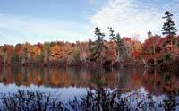 lacawac_autumn_200.jpg