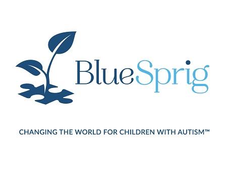 Blue-Sprig-Logo-Horiz-Whitesmall.jpg