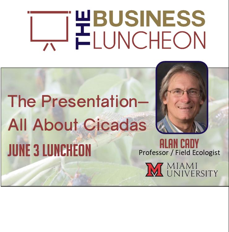 Cicada Presentation