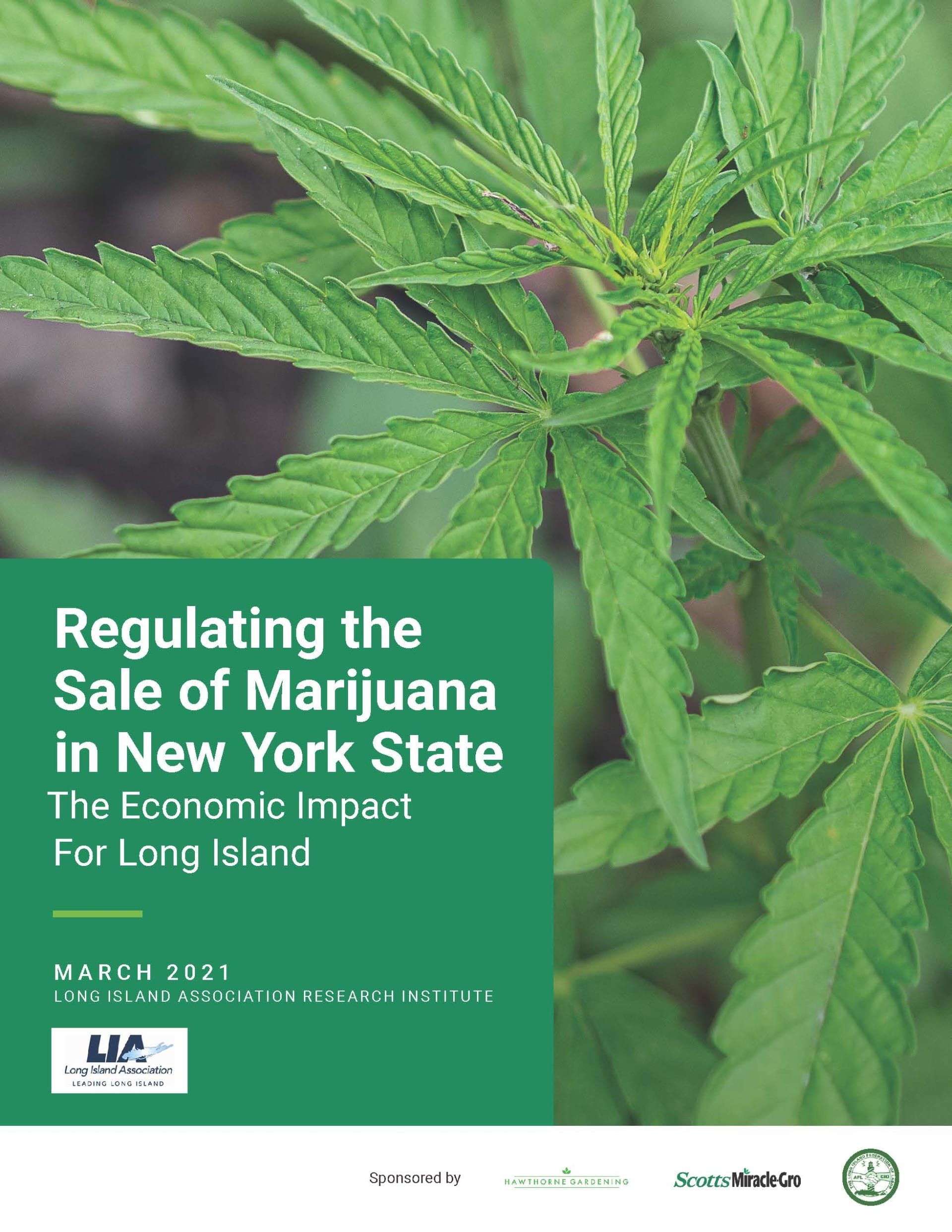 Regulating the Sale of Marijuana in New York State