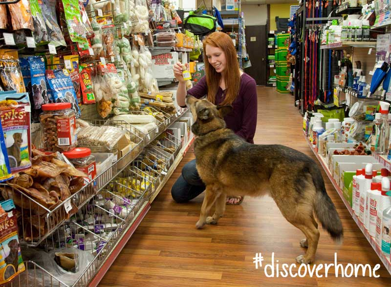 Shopping-for-pet-treats-in-Summerland