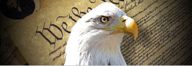 eagle photo.jpg