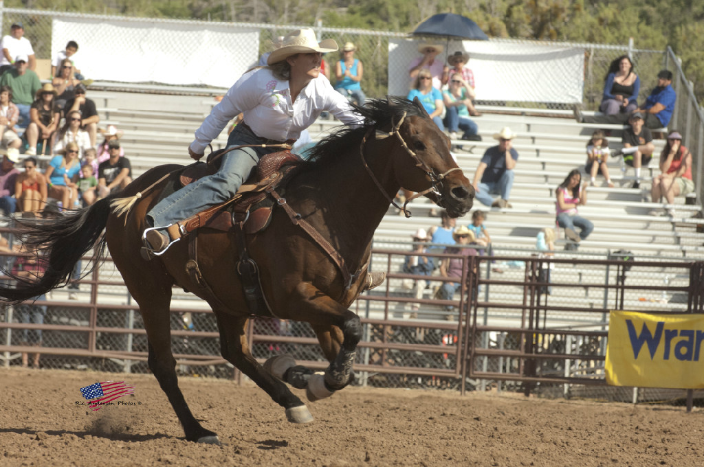 payson pro rodeo rim country chamber