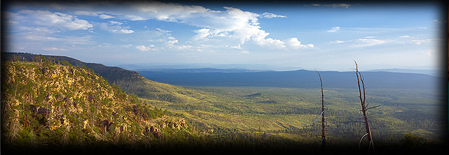View from  on top of the Mogollon Rim