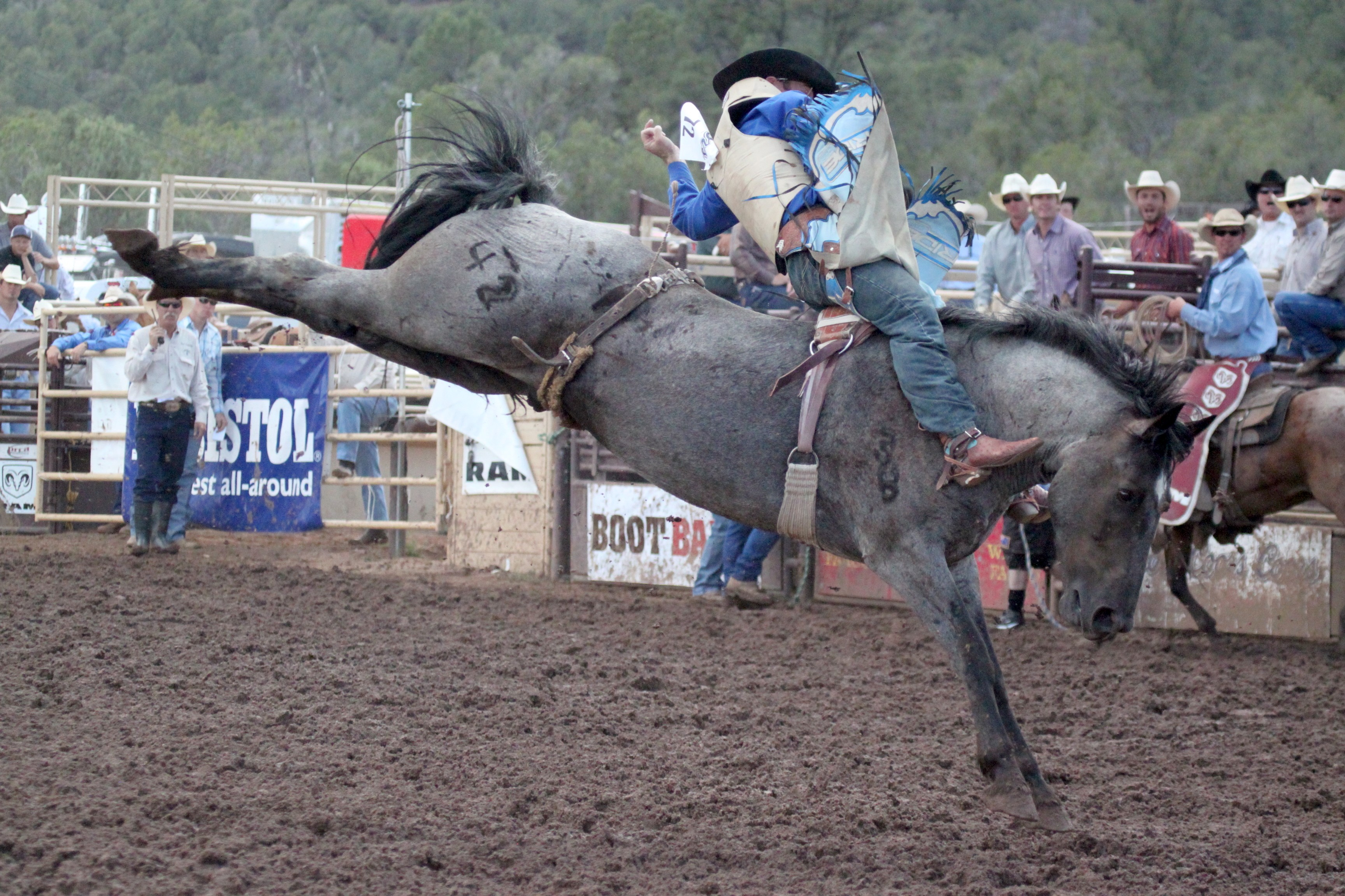 Payson_Rodeo_20014.JPG
