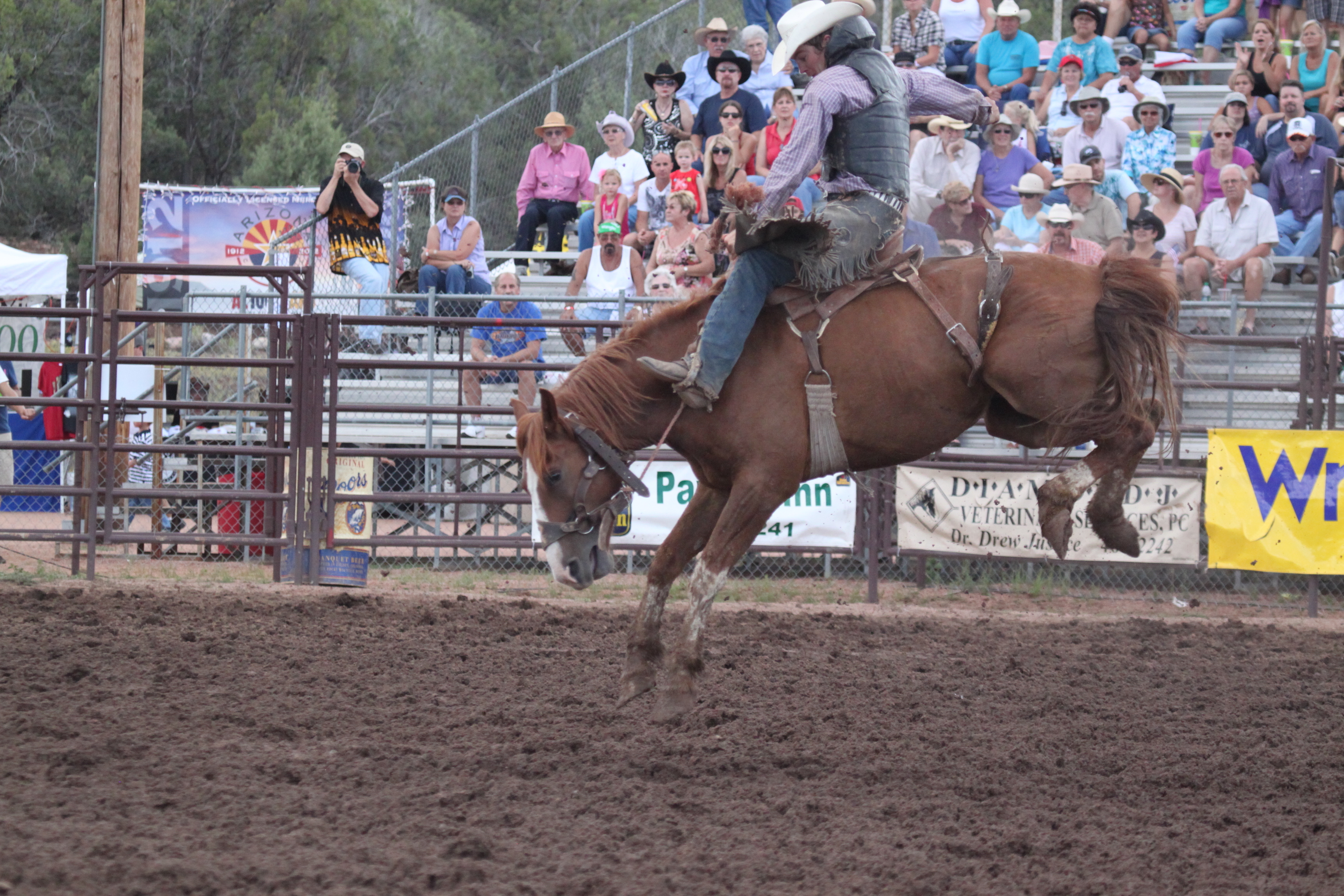 Payson_Rodeo_20031.JPG