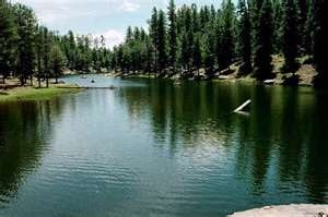 Woods Canyon Lake Rim Country Chamber