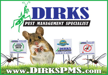 Dirks_PV_Chamber_Ad_2_5_x_5_72dpi.jpg