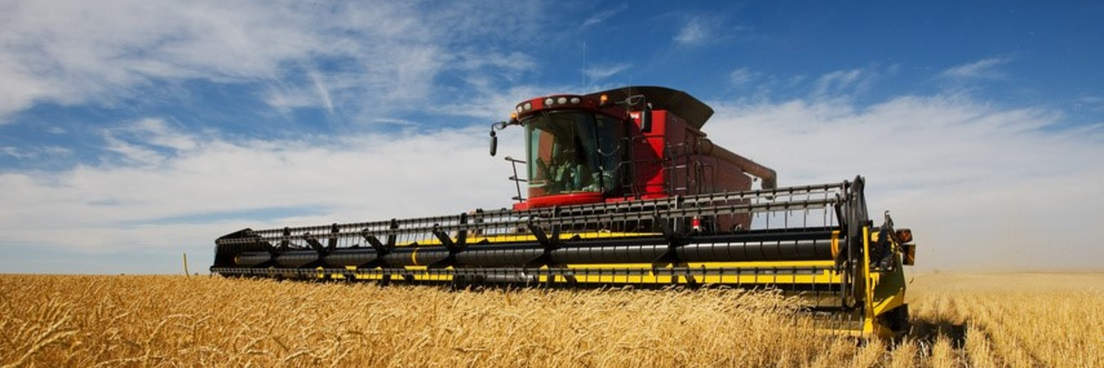 Combine-wheat-Cropped.jpg