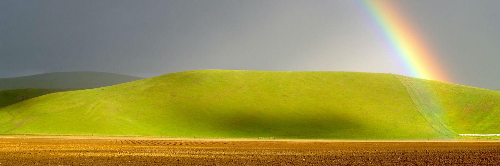 field-rainbow.jpg