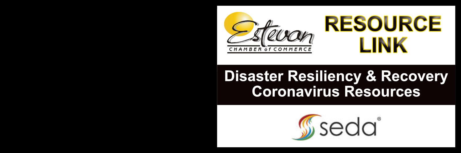 SEDA-Disaster-Resiliency-Link.jpg